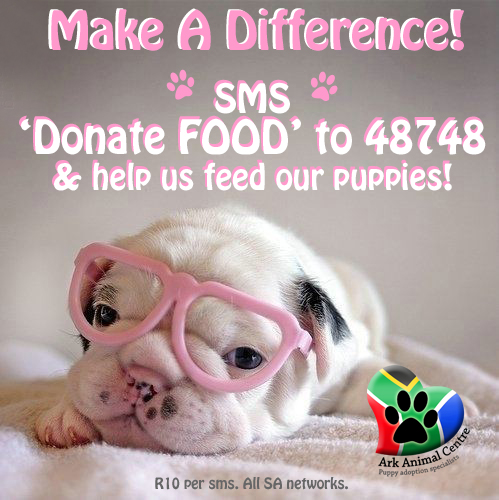 make a difference sms campaign poster ark animal centre puppy rescue shelter jhb copy