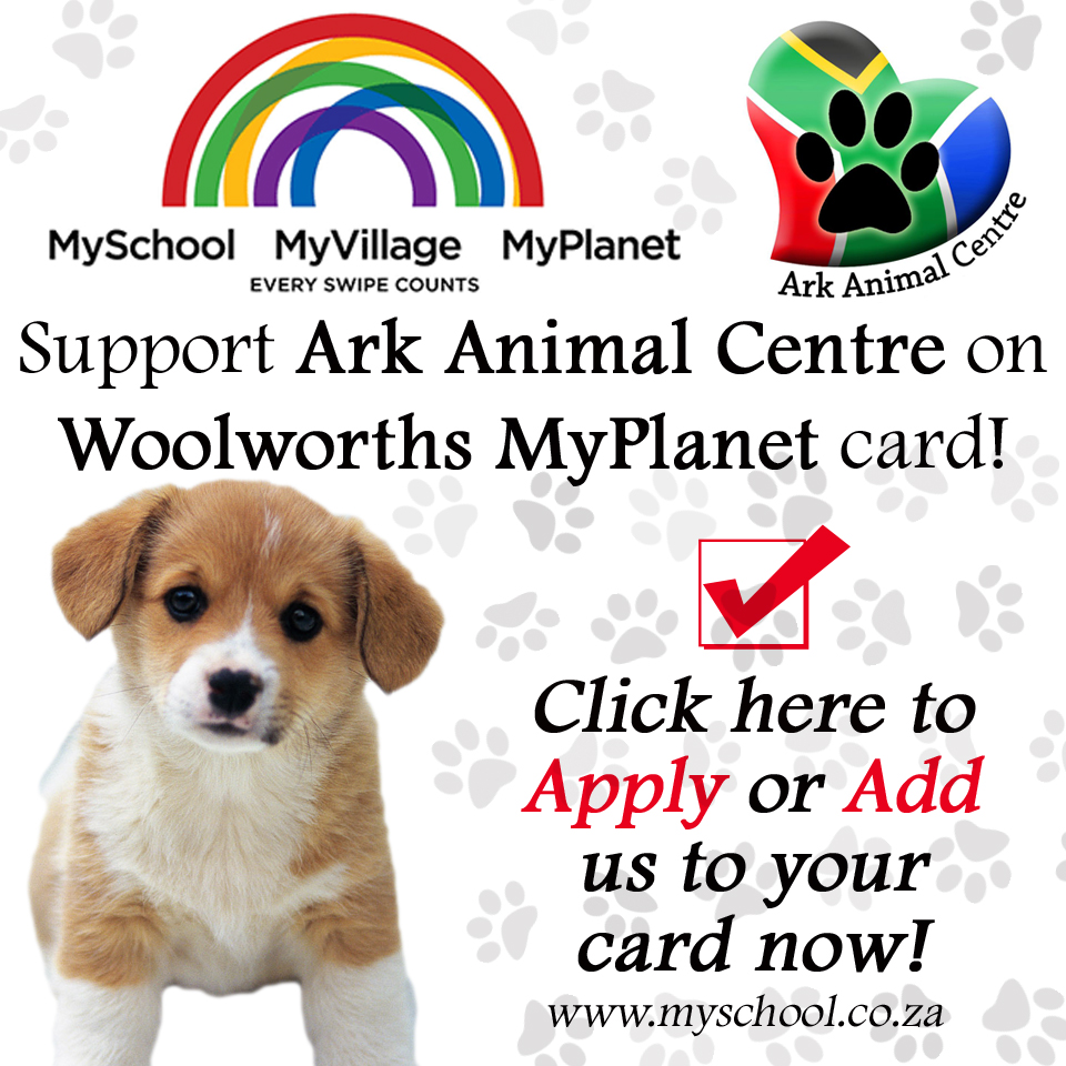 woolworths south africa, myplanet, myschool card, apply, ark animal centre, puppy shelter, johannesburg rescue welafre