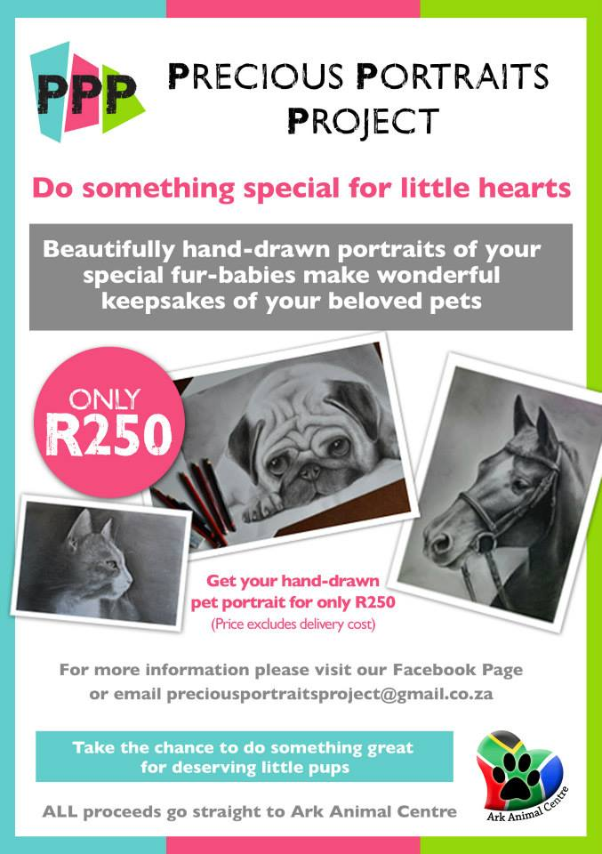 Pet-Portraits-sketching-drawings-south-africa